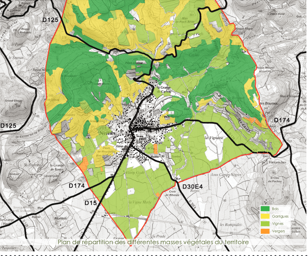 plan d'étude publié par la Mairie - analyse du projet exposé par la Mairie